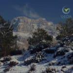 Gecia, experts comptables engagés en PACA